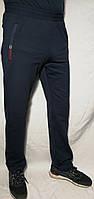 Спортивные штаны Paul Shark