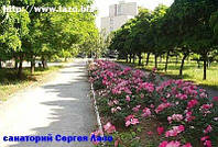 Путевки в санаторий Сергея Лазо на берегу Черного моря.