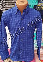 Стильная стрейчевая рубашка для мальчика 6-14 лет (опт)(клетка синяя) (пр. Турция)