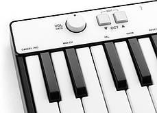 MIDI клавиатуры IK MULTIMEDIA iRig Keys Mini, фото 3