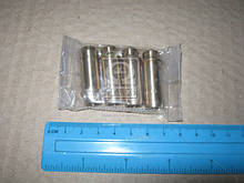 Напрямна клапана IN/EX VAG 36.5X8X12.06 (пр-во KS) 81-3310