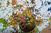Как красиво украсить пасхальные яйца (писанки) восковыми мелками