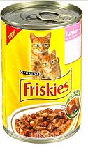 Корм ФРИСКИС для кошенят 0,3 кг (Friskies)