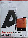 Опрыскиватель аккумуляторный Assistant (Ассистант) АО-16/3H, фото 2