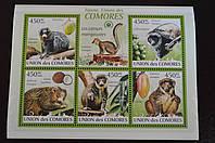 Коморские острова. Фауна. 2009год