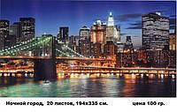 Фотообои 194х335 ночной город