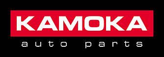 Дисковые тормозные колодки (задние) на Renault Trafic III 2014-> - Kamoka (Польша) - KAMJQ1013032