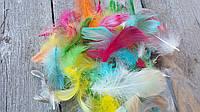 Перья гуся цветные, микс цветов (ок 150 шт) 30\25 (цена за 1 шт+5 грн)