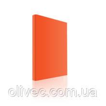 Тетрадь офисная неон А4, 80 листов, клетка