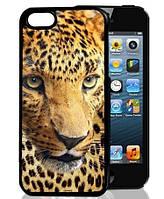 3D чехол на Iphone 5/5s Леопард, фото 1