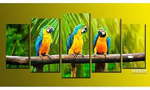 "Модульная картина на холсте Holst Art ""Попугаи"" (HAB-001)"