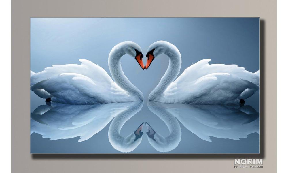 """Картина на холсте Holst Art """"Лебеди"""" (HAS-108)"""