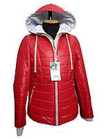 Куртка для девочки демисезонная Весна, фото 1