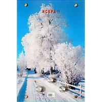 """Газовый проточный водонагреватель ИСКРА JSD 20 LCD MT-1 принт """"зима"""" (стекло) - 10 л\мин"""