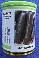 Семена огурца  сорт Феникс 640 100 грм в банке ТМ Marvel