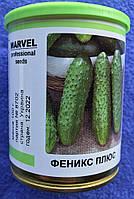 Семена огурца 100 гр сорт Феникс плюс в банке
