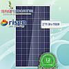 Солнечная панель Risen RSM-60-275P, 5BB