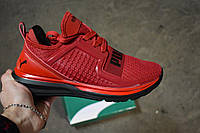 Мужские кроссовки Puma Ignite Red, Копия