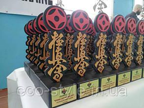 Награды от Эко Стиль на кубке по куодокиокушин карате в Полтаве