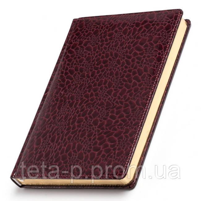 Ежедневник датированный, не датированный А5 обложка 'TORTUGA'