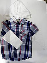 Кофта-сорочка для хлопчика Silver sun 51768