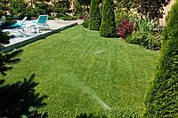 Укладка рулоного газона с подготовкой