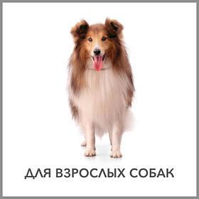 Purina Pro Plan -супер преміум корм для дорослих собак
