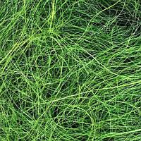 Сизаль  зеленая все для декора и творчества