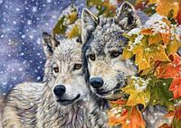 Алмазная вышивка на подрамнике Верная пара волков 40 х 50 см (арт. TN700), фото 1