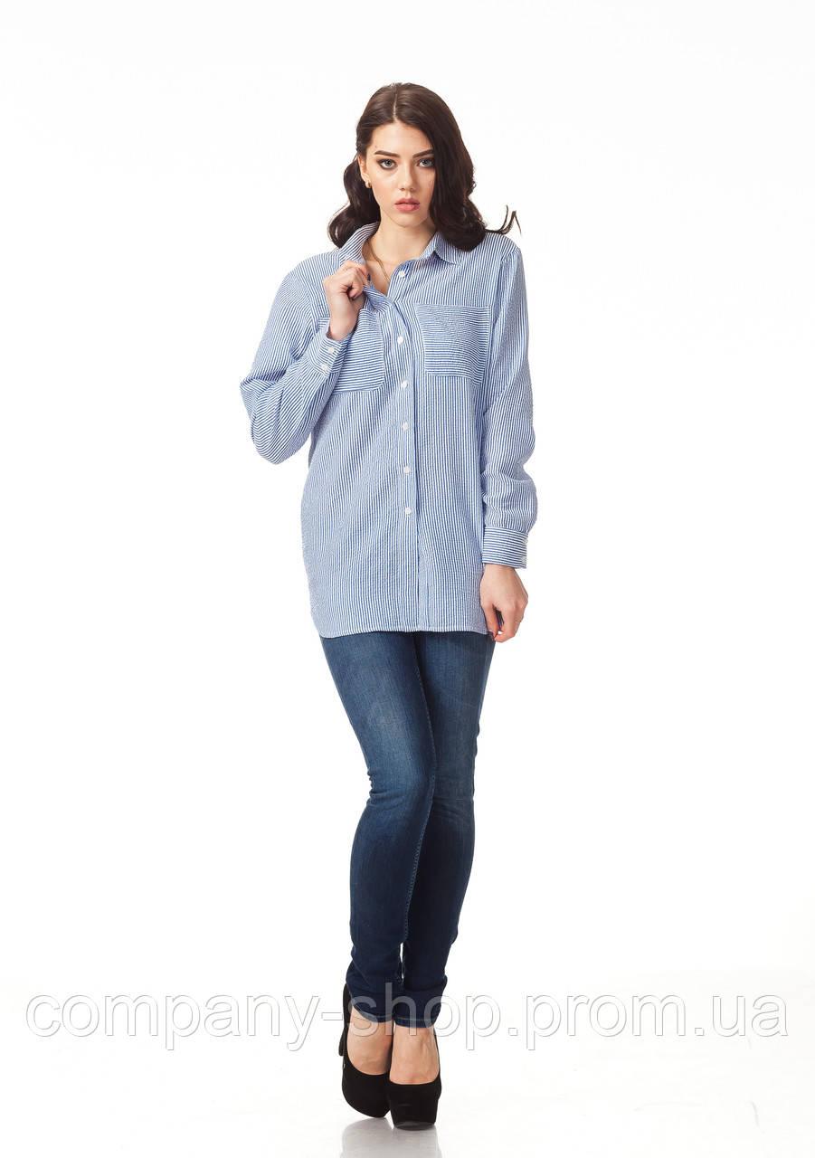 Женская хлопковая рубашка. Модель К090_хлопок полоска голубая
