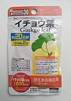 Гингко билоба-отличная память, сосуды и полноценная жизнь в любом возрасте. Япония
