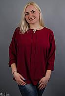 Лиза, стильная блуза больших размеров, фото 1