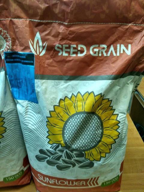 Семена подсолнечника ПРОНТО устойчивого к восьми расам заразихи. Купить высокоурожайный гибрид ПРОНТО от компании Сид Грейн / США