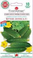 Семена Огурец пчелоопыляемый  Бутон Лотоса F1,  10 семян Солнечный Март