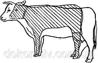 Трикальцийфосфат кормовой для животных и птиц от производителя (свиней, телят, кур и пр.), фото 2