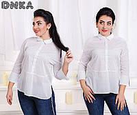 Рубашка женская большие размеры (цвета) /с466.1, фото 1