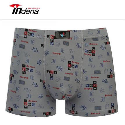 Мужские боксеры стрейчевые марка INDENA АРТ.65024, фото 2