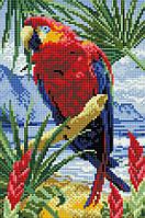 "Набір для алмазної мозаїки ""Папуга"" CF028"