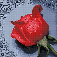 """Набір для алмазної мозаїки 30х30см """"Троянда червона"""" DF062"""