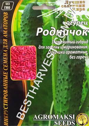 Семена огурца «Родничок F1» 4 г, инкрустированные, фото 2