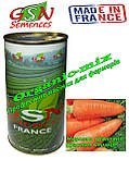 Семена, морковь Шантане РЕД КОР КРАСНОЕ СЕРДЦЕ, Франция, GSN Semences, фасовка 500 грамм банка, фото 2