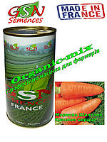 Морковь ранняя Шантане КРАСНОЕ СЕРДЦЕ, Франция, GSN Semences, фермерская фасовка 500 грамм банка