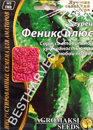 Семена огурца «Феникс плюс» 4 г, инкрустированные, фото 2