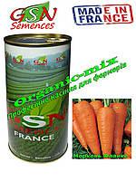 Морковь поздняя Флакке / Flakke, Франция, GSN Semences банка 500 грамм,