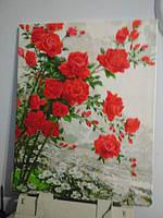 Картина по номерам Turbo Розы на ромашковом поле VP610