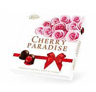 """Vobro, """"Cherry Paradise"""""""