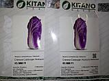 Семена капусты КС 888 F1, 2500 семян, фото 4