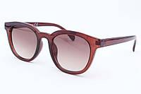 Солнцезащитные очки Sandro Carsetti, 751734