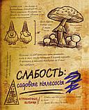 Дневник Диппера 3 книга Гравити Фолз, фото 3