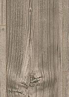 Коркова підлога EGGER V4 Дуб Гантсвілл сірий